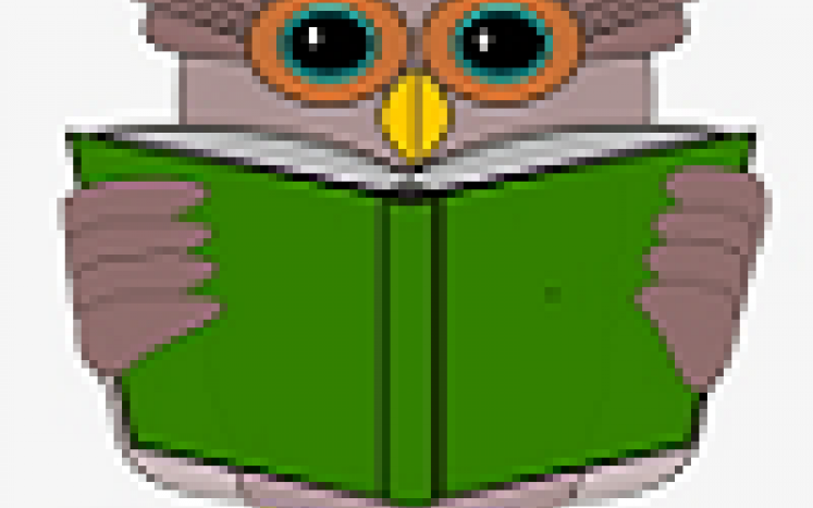 summer reading, virtual, ossipee