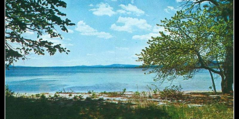 """Old postcard - Ossipee Lake framed by trees on sides, with grassy area in foreground - says """"Ossipee Lake, White Mountains, NH"""""""